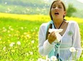 春季所有花都会导致花粉过敏?这可不一定